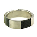 stainless steel ring GCR0011