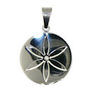 stainless steel pendant PDJ3387